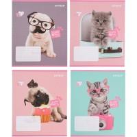 Тетрадь школьная Kite Studio Pets SP21-237, 18 листов, в линию