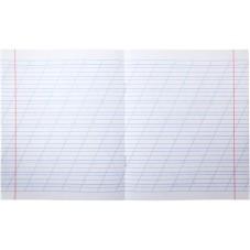 Тетрадь школьная Kite Studio Pets SP20-235, 12 листов, в косую линию