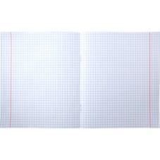 Тетрадь школьная Kite Studio Pets SP20-236, 18 листов, клетка