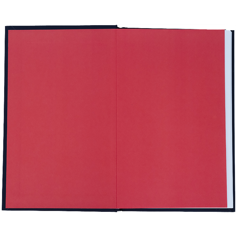 Книга записная Kite NASA NS21-199-2, твердая обложка, А6, 80 листов, клетка