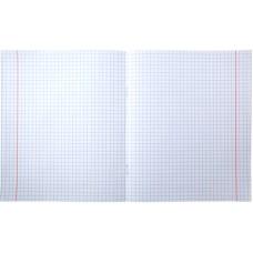 Тетрадь школьная Kite Studio Pets SP20-232, 12 листов, клетка