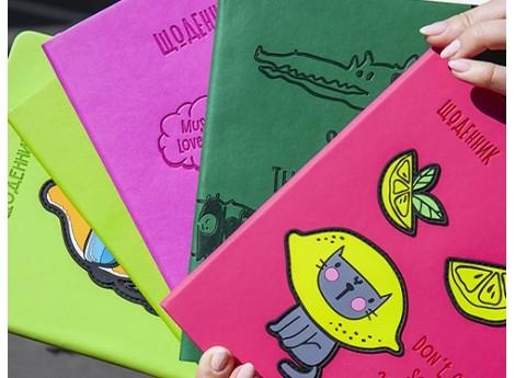 Школьные дневники Kite